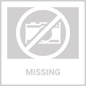 310208 0310208 OMC Aluminum Prop 8 x 4.5 Evinrude Johnson 3-4 HP